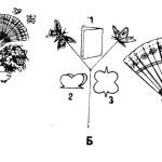 Фокус с летающими бабочками